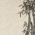 аватар с видом японии
